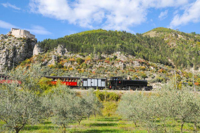 Le train des olives
